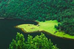 Vista aerea delle case scandinave sulla riva di fotografia stock