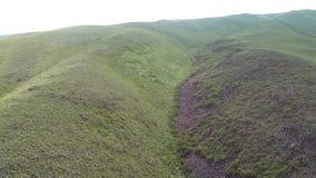 Vista aerea delle colline con erba verde video d archivio