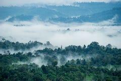 Vista aerea delle colline in rurale coperto di nebbia di mattina Fotografia Stock Libera da Diritti