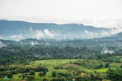 Vista aerea delle colline in rurale coperto di nebbia di mattina Fotografia Stock