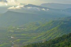 Vista aerea delle colline in rurale coperto di nebbia di mattina Immagine Stock Libera da Diritti