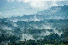 Vista aerea delle colline in rurale coperto di nebbia di mattina Immagini Stock