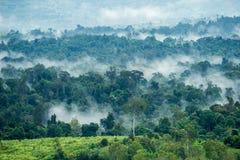 Vista aerea delle colline in rurale coperto di nebbia di mattina Immagine Stock