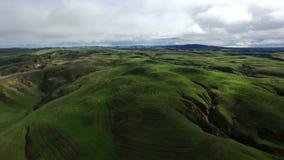 Vista aerea delle colline verdi e dei prati stock footage