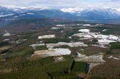Vista aerea delle foreste Fotografie Stock Libere da Diritti