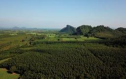 Vista aerea delle montagne e della foresta fotografie stock libere da diritti