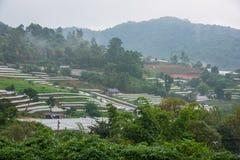 Vista aerea di agricoltura della serra e di agricoltura Chiang Mai Fotografie Stock