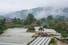 Vista aerea di agricoltura della serra e di agricoltura Chiang Mai Fotografie Stock Libere da Diritti
