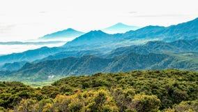Vista aerea di ampia area della foresta, seguita dalla collina nebbiosa e Fotografia Stock