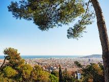Vista aerea di Barcellona con l'albero nella priorità alta Fotografie Stock