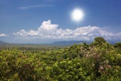 Vista aerea di bella vista del cielo della palma delle montagne Bali, Indonesia Fotografia Stock Libera da Diritti