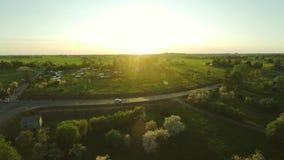 Vista aerea di bello giardino sbocciante dell'Apple-albero Metraggio aereo stock footage
