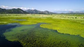 Vista aerea di bello paesaggio del lago Skadar nella montagna un giorno soleggiato montenegro Il territorio del lago fotografie stock libere da diritti