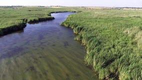 Vista aerea di delta di Danubio archivi video