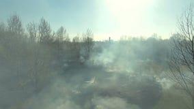 Vista aerea di incendio forestale archivi video