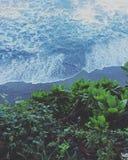 Vista aerea di litorale fotografia stock libera da diritti