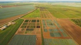 Vista aerea di terreno coltivabile stock footage