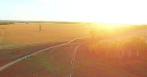 Vista aerea di UHD 4K Volo mezz'aria sopra il campo e la strada non asfaltata rurali gialli archivi video