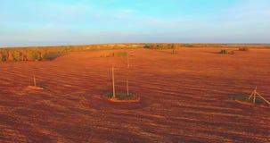 Vista aerea di UHD 4K Volo mezz'aria sopra il campo rurale giallo archivi video