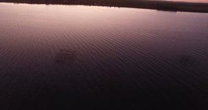 Vista aerea di un campo dell'ostrica durante il tramonto stock footage
