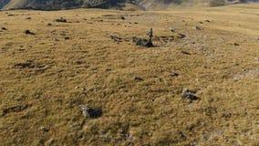 Vista aerea di un fotografo della ragazza che cammina su un plateau nelle montagne con la sua macchina fotografica sui precedenti video d archivio