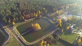 Vista aerea di un lago di autunno in foresta con una vista di occhio dell'uccello archivi video
