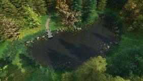 Vista aerea di un lago woodland fotografie stock libere da diritti