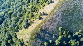 Vista aerea di un percorso che conduce a Monte Boletto, alpi, vicino al lago Como Como, Brunate, Lombardia, Italia Immagini Stock