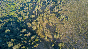 Vista aerea di un percorso che conduce a Monte Boletto, alpi, vicino al lago Como Como, Brunate, Lombardia, Italia Fotografia Stock Libera da Diritti