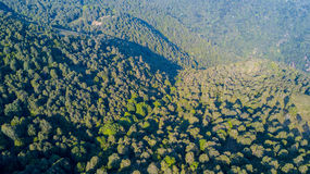 Vista aerea di un percorso che conduce a Monte Boletto, alpi, vicino al lago Como Como, Brunate, Lombardia, Italia Immagine Stock