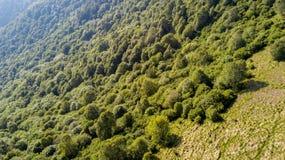 Vista aerea di un percorso che conduce a Monte Boletto, alpi, vicino al lago Como Como, Brunate, Lombardia, Italia Fotografia Stock