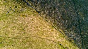 Vista aerea di un percorso che conduce a Monte Boletto, alpi, vicino al lago Como Como, Brunate, Lombardia, Italia Fotografie Stock Libere da Diritti