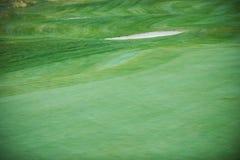 Vista aerea di un terreno da golf Fotografia Stock