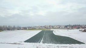 Vista aerea di una città sotto la neve archivi video