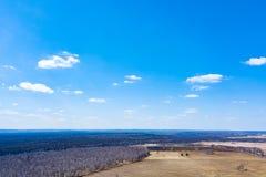 Vista aerea di una foresta con le betulle bianche senza foglie, gli alberi verdi coniferi nella distanza e un campo per piantare fotografie stock