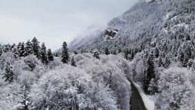 Vista aerea di una strada in una foresta di inverno un giorno nuvoloso Una bella strada di inverno fra la natura dell'abete rosso video d archivio