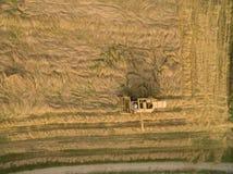 Vista aerea di vecchia mietitrebbiatrice al raccolto di grano Fotografia Stock