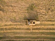 Vista aerea di vecchia mietitrebbiatrice al raccolto di grano Fotografia Stock Libera da Diritti