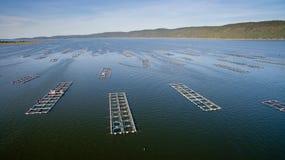 Vista aerea, gabbia del pesce, gabbie del pesce Immagine Stock Libera da Diritti