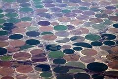 Vista aerea irrigata rotonda dei campi Immagine Stock Libera da Diritti