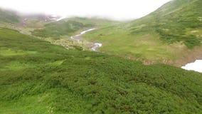 Vista aerea Kamchatka Sorvolare la foresta ed il fiume Insenatura nelle montagne archivi video