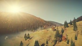 Vista aerea nebbiosa del pendio dell'altopiano soleggiato della fauna selvatica video d archivio