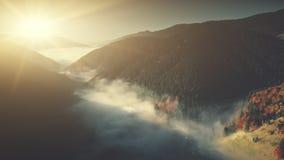 Vista aerea nebbiosa del pendio della montagna di legno selvaggia profonda archivi video
