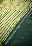 Vista aerea: Raod lungo un campo fotografie stock libere da diritti