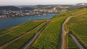 Vista aerea Ruedesheim, Bingen e vigne archivi video