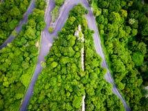 Vista aerea sopra il paesaggio della foresta della strada della montagna Immagini Stock