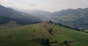 Vista aerea: Sorvolare un bello campo nelle montagne carpatiche vicino alla città Mizhgirja stock footage