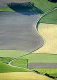 Vista aerea: Strada curva piacevole nei campi Immagini Stock Libere da Diritti
