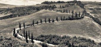 Vista aerea stupefacente della strada di bobina della campagna della Toscana in sprin Fotografia Stock Libera da Diritti