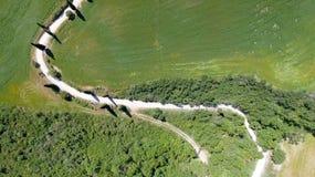 Vista aerea stupefacente della strada di bobina della campagna della Toscana in sprin Fotografie Stock
